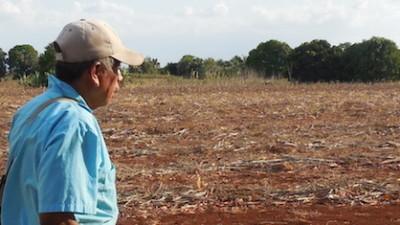 Clima y precios presionan a las familias mayas