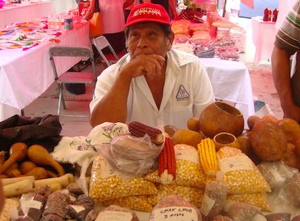 Semillas nativas en una feria que organizan pueblos mayas de Yucatán