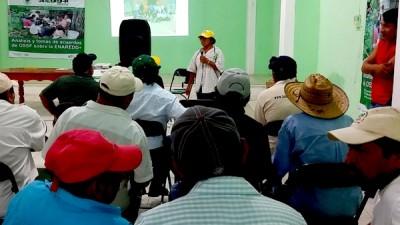 Campesinos mayas del sur de Yucatán trazan prioridades para afrontar el cambio climático