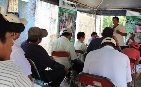 Ejidatarios escuchan las conclusiones de un evento este domingo en Peto
