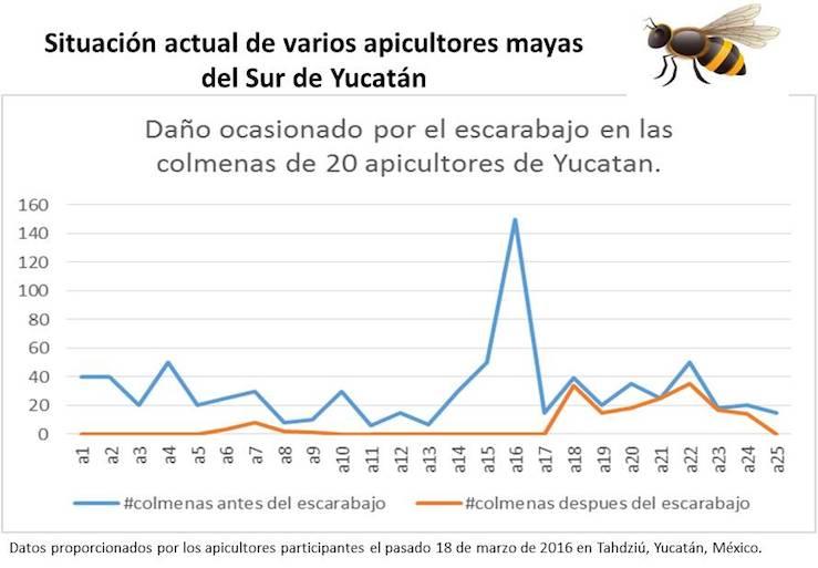 Datos proprocionados por los apicultores mayas