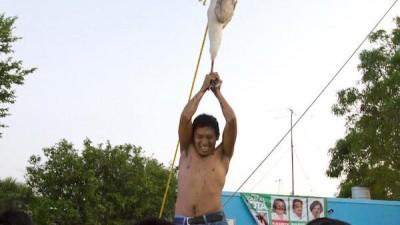 """El """"kots kaal pato de los mayas"""" y sus orígenes españoles"""
