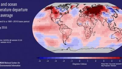 La ballena varó en Yucatán en el mes más caliente del planeta