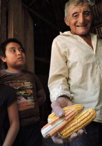 Un abuelo muestra sus semillas, en el sur de Yucatan