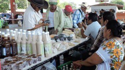 """La verdadera Feria de las semillas nativas y la """"otra feria"""" que trae confusión"""