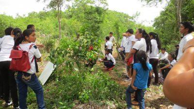 Estudiantes de Telesecundaria de Popolá visitan la milpa del Arux en Peto