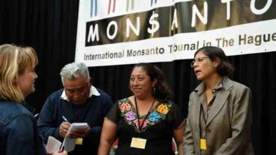 La Haya se manifestará sobre la denuncia de mayas contra Monsanto el 10 de diciembre