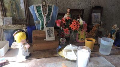 Aparece un venado en calles de Peto; vecinos temen calamidades