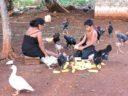 """Organizan un """"frente de pueblos mayas"""" para proteger las tierras"""