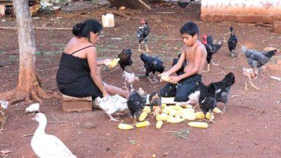 El mes de julio será decisivo para las siembras, afirma el Colectivo Cabañuelas Mayas