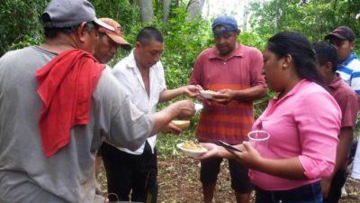 Expresividad y obscenidad en la lengua maya