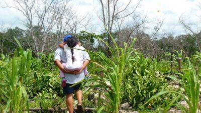 La protección de la biodiversidad en Yucatán, el gran desafío del nuevo gobierno federal