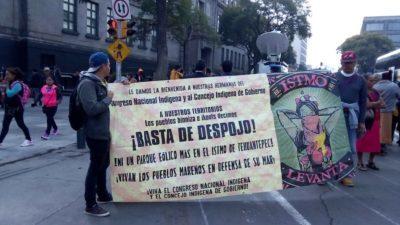 """Una agencia de EE.UU. financia a consorcio mexicano """"verde"""" que maniobra contra los pueblos indígenas"""
