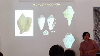 El estudio de conchas, un pendiente en la Arqueología en Yucatán