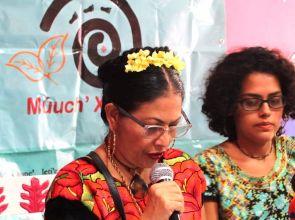"""Energía renovable, """"energía de muerte"""" para los indígenas, le dicen a Semarnat en Mérida"""